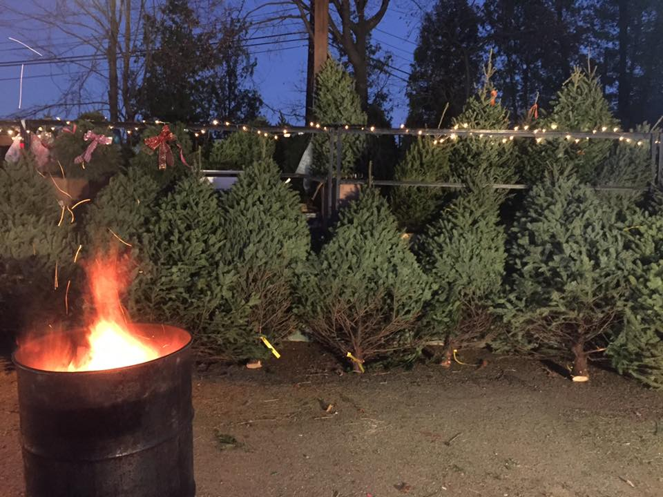 Christmas tree stand at CJ Tree Sale @ \u2013 Construction Junction